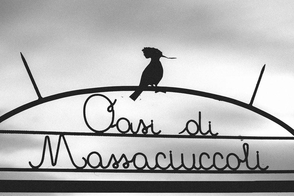 passerella-oasi-lipu-massaciuccoli